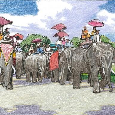 ELEPHANT KINGDOM-3