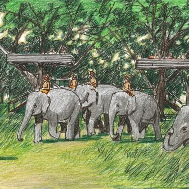 ELEPHANT KINGDOM-7